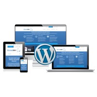 WordPress Update: add new plugins to your existing website